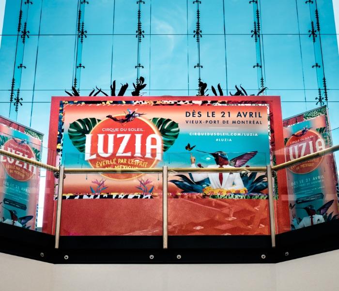 Luzia-Final-1